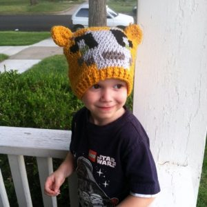 Stampy Cat Hat